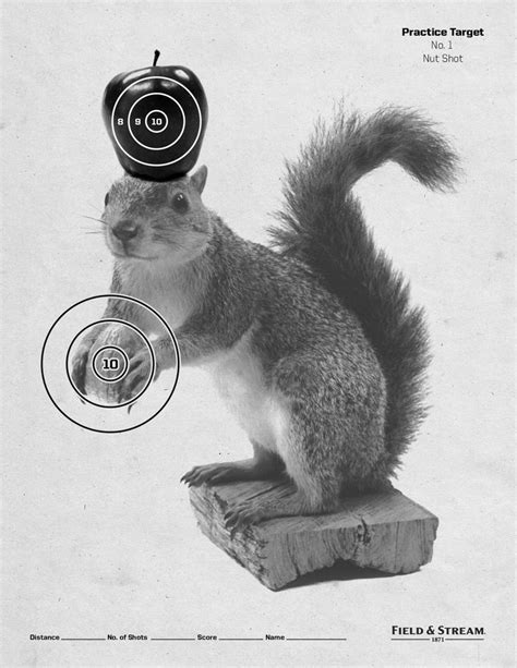 printable zombie animal targets 12 best images about printable targets on pinterest air