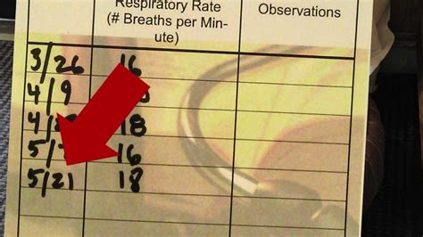 normal respiratory rate for dogs how to measure a resting respiratory rate in a