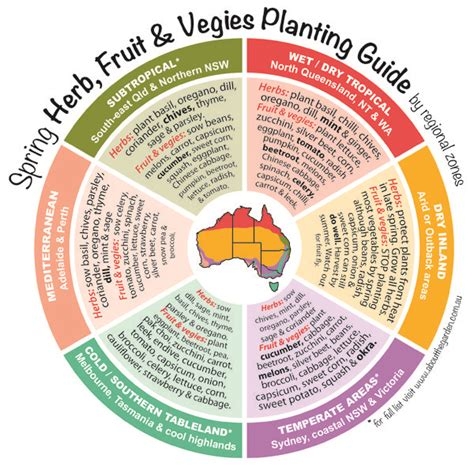fruit zone map herb fruit vegies planting guide by temperate