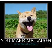 Funny Image Clip Motivational Poster Animal Rights