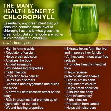 Chlorophyll Detox Benefits by Take Back Your Health Edmark Splina Liquid Chlorophyll