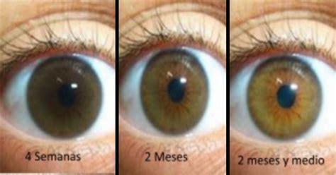 imagenes chidas que cambian de color 7 alimentos que cambian el color de ojos para los curiosos
