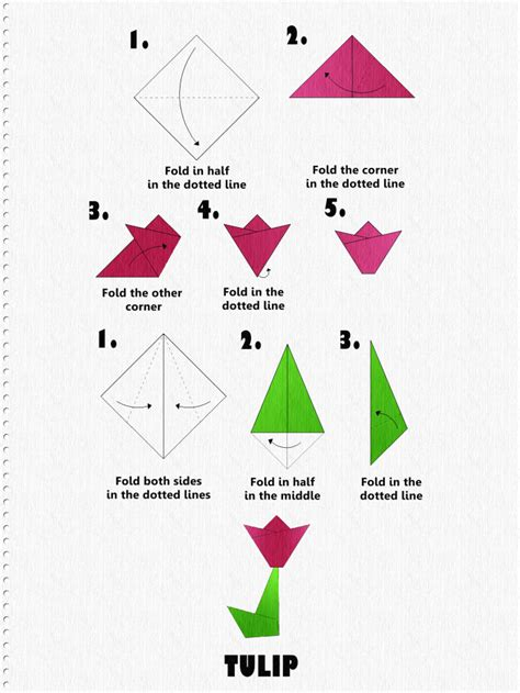 Easy Origami Tulip - how to make an origami tulip step by step tutorial