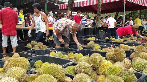 travel dairy tangkak durian trip