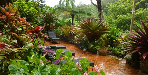 Tropical Home Decor Ideas by Tropical Gardens Of Hawaii With Graham Ross Ross Garden