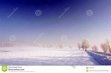 Frozen Sky Blue blue sky and frozen meadow royalty free stock photos