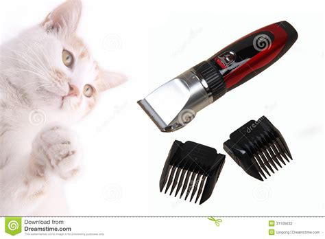 cutting lengths for clippers that pet electric hair clipper stock photography image 31105632