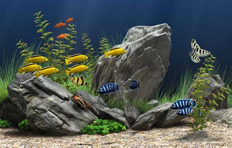 3d Home Design Software Mac Os X by Dream Aquarium For Mac Os X 1 25 Full Screenshot