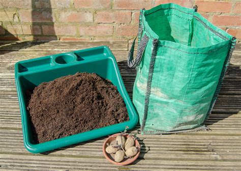 Potato Planter Bag by How To Grow Potatoes In A Bag Growing Family