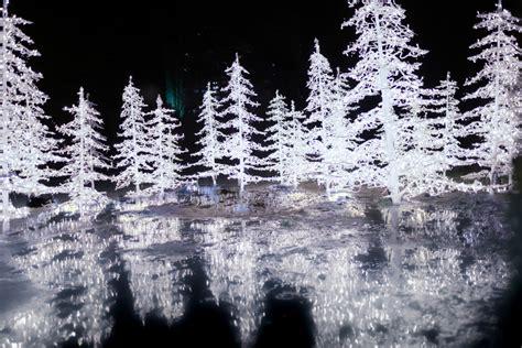 enchant christmas light maze enchant christmas light maze market montecristo