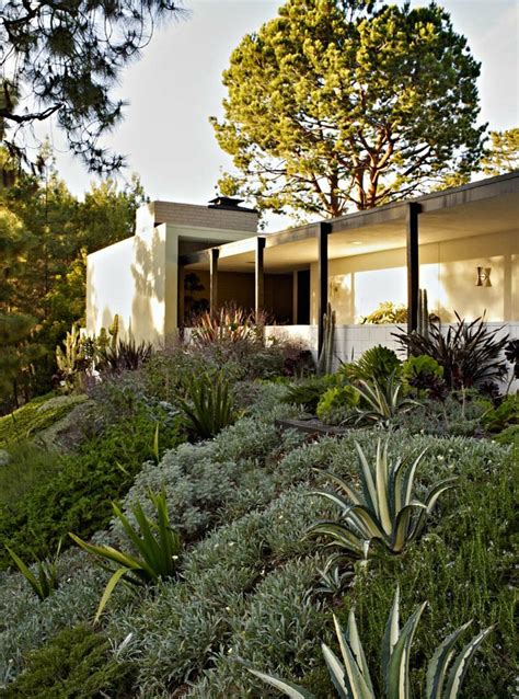 southern california hillside landscaping inspired by