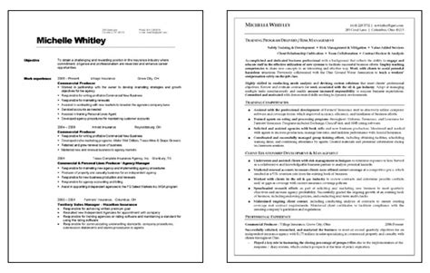 resume format for corporate corporate trainer resume exle