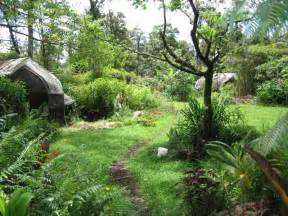 the permaculture movement eco evolution radio