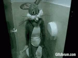 Bathroom Bunny Gif Rabbit Creepy Gif Rabbit Creepy Toilet Discover
