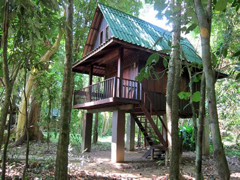 khao sok tree house images