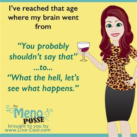 hot flash funnies best 25 menopause humor ideas on pinterest hot flashes