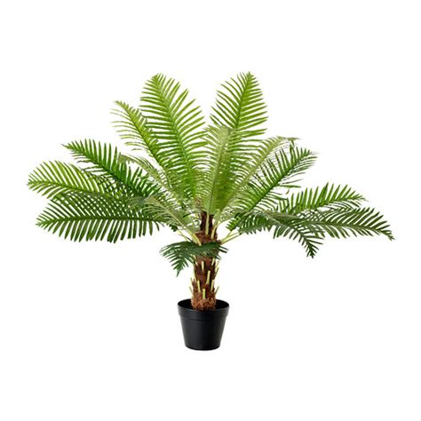Palm Tree Bathroom Rugs Fejka Artificial Potted Plant Ikea