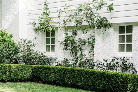 Landscape Design Masters Historic South Leura Estate Masters Landscape By Design