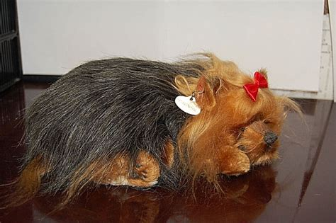 yorkie wheezing yorkie plush shop collectibles daily