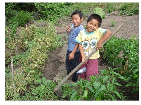 imagenes de nuevas ideas economicas nicaragua proyecto fnpp centroam 233 rica