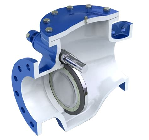 what is swing check valve dezurik apco swing check valves cvs