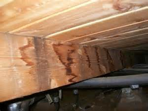 Sub Floor Water Stains On The Sub Floor Big Bear Home Inspections