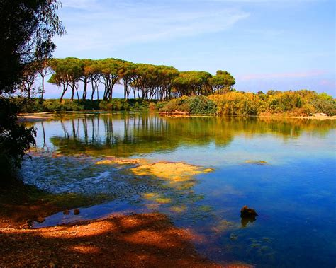 imagenes de paisajes llaneros paisaje de un pantano fondos de paisajes