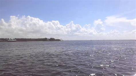 glass bottom boat dolphin tour panama city beach fl - Glass Bottom Boat Dolphin Tours