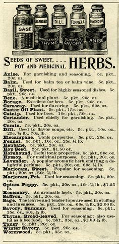 printable barbicide label victoria era style apothecary signage poster