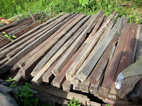 Sale The Temulawak Hanya tanaman khas sumatera dan kalimantan