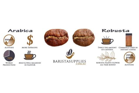 Coffee Robusta arabica coffee beans vs robusta coffee beans what s the difference anyway