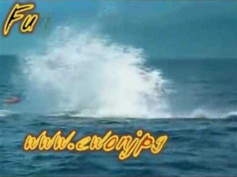 Pelung Anak Ikan Paus Jumbo singa berusaha menyerang bayi tapi apalah daya funnycat tv