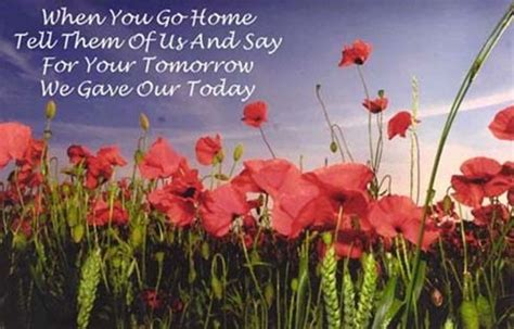 poppy pappy day lyrics best 25 remembrance day quotes ideas on pinterest poem