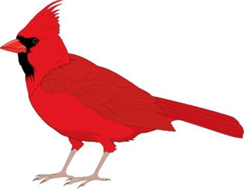 Wonderful Cardinal Christmas Cards #6: Cardinal_male.png