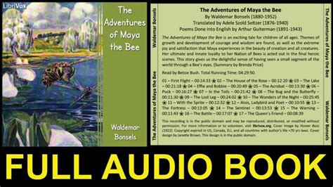 the bee book books the adventures of the bee audio book