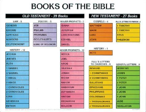 Different Sections Of Christianity by Learn The Books Of The Bible Summer List