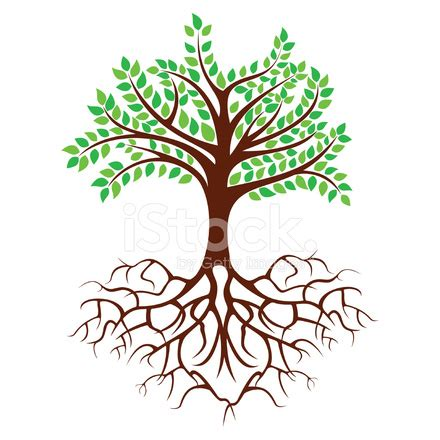 ayurveda tree of medical stock vector freeimages.com