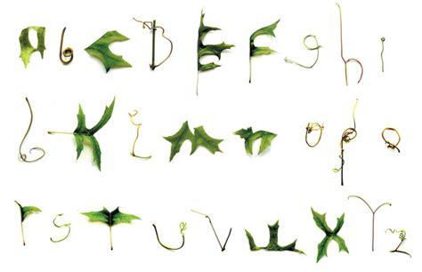font design nature matthew mackowiak