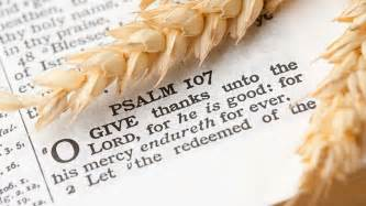 Verse About Thanksgiving Thanksgiving 2015 Bible Verses For Your Cards Ten Best