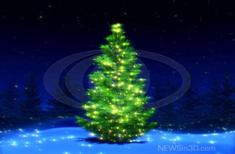 christmas tree high resolution picture