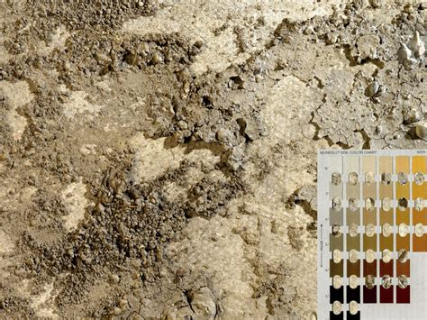 munsell soil color chart soil judging contest the use of munsell color charts for