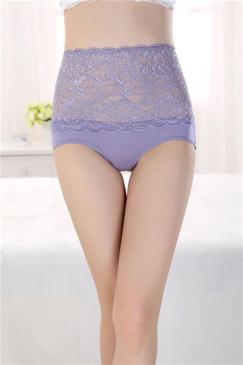 Embroidered High Waist Mesh Brief by Lightly Lined Bra Shopping Underwired Bra
