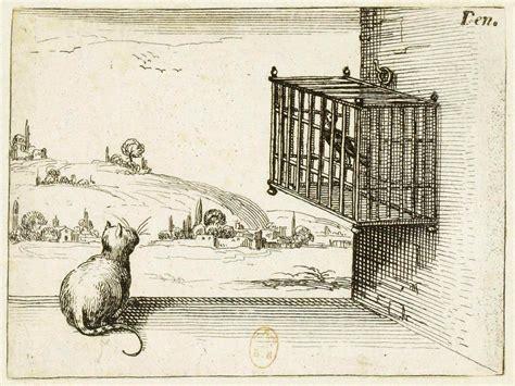 gatto in gabbia gatto guarda uccello in gabbia