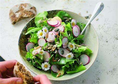 salat anrichten salat rezepte kreative k 252 che f 252 r den schnellen familienalltag