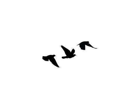 small black birds tattoo birds clipart best tatoos