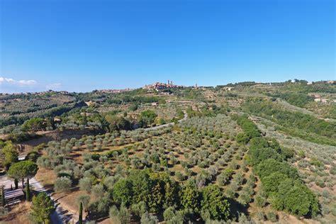 pienza la citta ideale rubrica un oasi tra gli ulivi a citt 224 della pieve il borgo delle