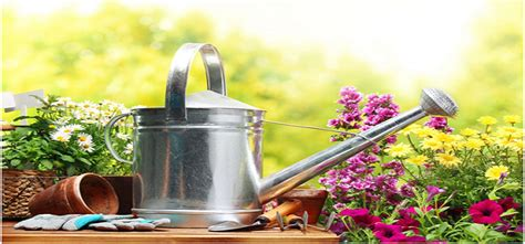 Gardening Tips And Tricks by 9 Simple Gardening Tips And Tricks Terelee Homes