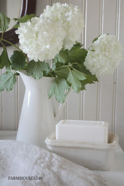 minimalist home decor plants flowers becca haf blogs 10 ways to use white farmhouse pitchers the everyday home