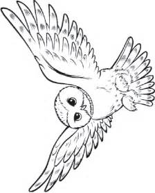 harry potter coloring pages owl coloriage harry potter 2 224 colorier allofamille