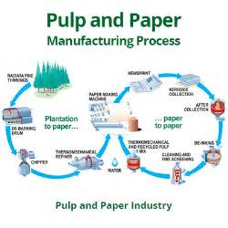Paper Pulp Process - pulp and paper manufacturing process in the paper industry